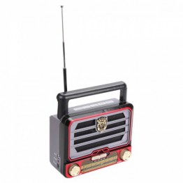Everton RT 313 Radyo